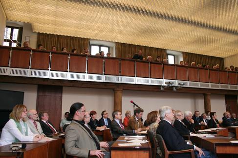 Haushalt 2011 - Stadtrat (2)