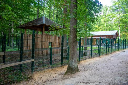 Wildpark EhrenElchBäckerMeisterBrief für Hauptsponsoren - Foto (c) Stefan Pfister (19)