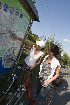 Radfahren Main_Quelle Andreas Hub (3)