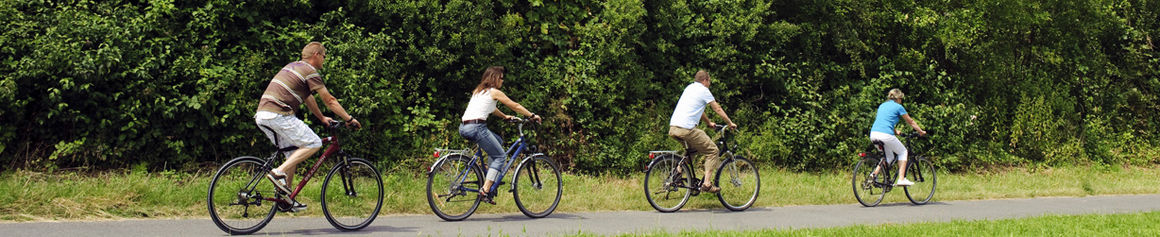 Fahrradfahren am Main (Foto: Andreas Hub)