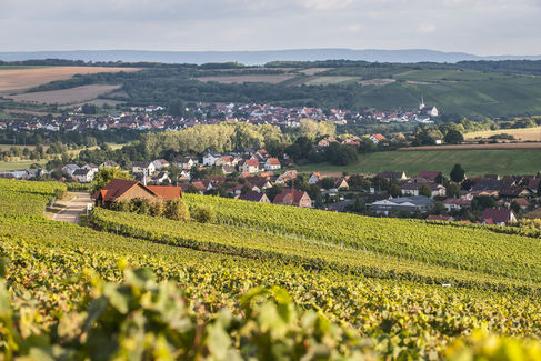 Wine and Gourmet Country; Photo: F. Trykowski